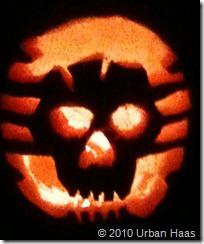 Urban's skull pumpkin