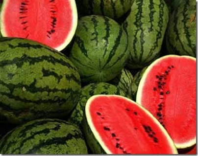 Watermelon can be converted to Bioethanol