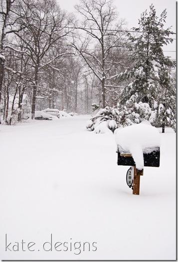 snow feb 6, 2010 008