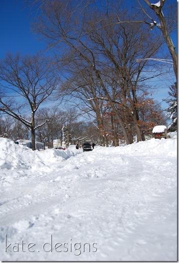 snow feb 7, 2010 021