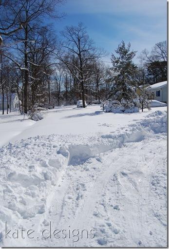 snow feb 7, 2010 041