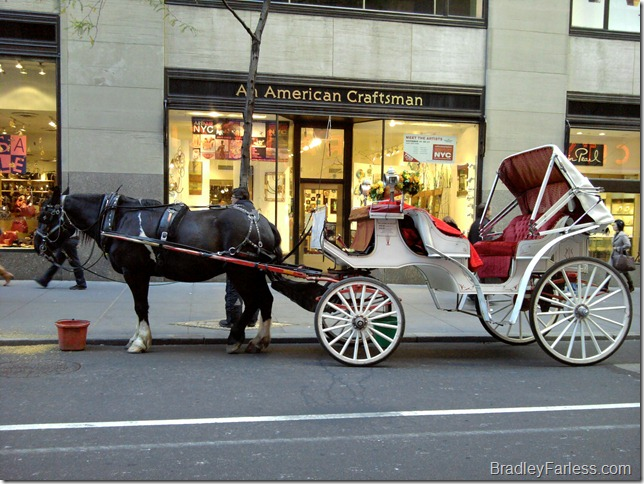A horse drawn carriage in New York City.