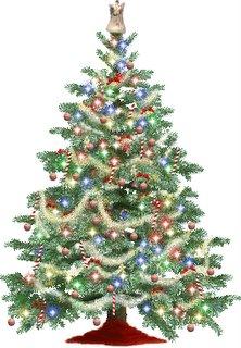 Christmas_Tree-2005-12-23-02-53.jpg