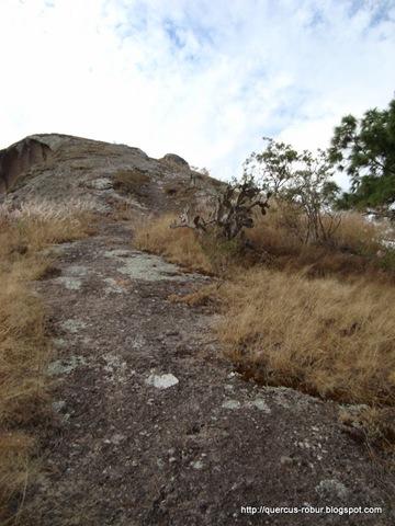 Ascenso al Cerro de la Campana