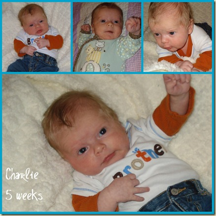 Charlie 5 weeks collage