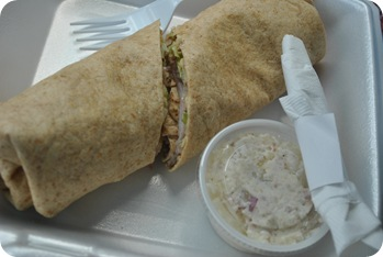 turkey/cranberry wrap