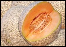 melon (1)