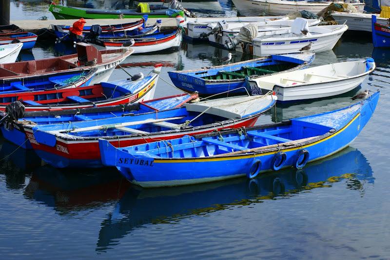 As cores da doca dos pescadores em Setúbal