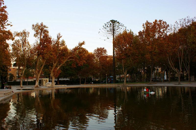 Fim de tarde de Outono, Jardim do Bonfim, Setúbal
