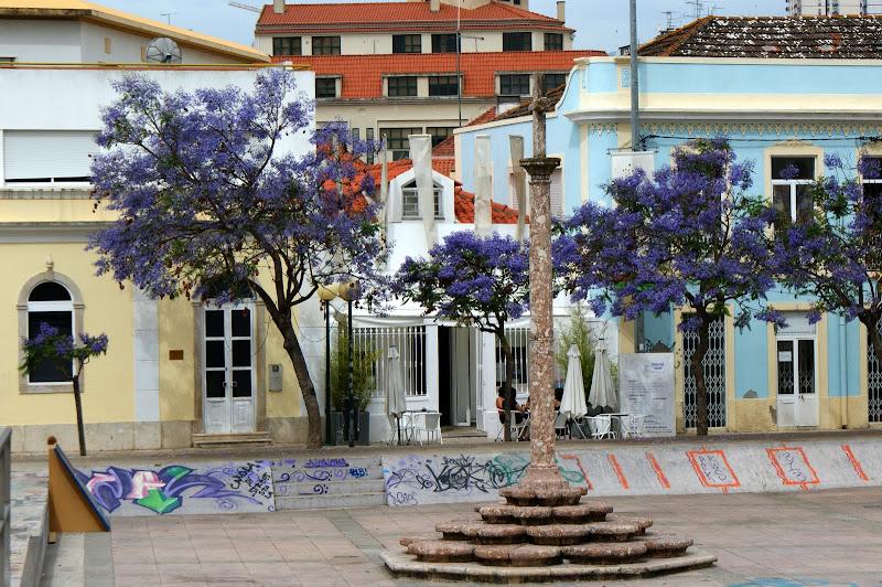 Largo de Jesus, jacarandás e grafitis