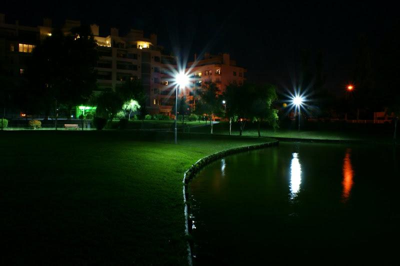 Noites de verão no Jardim da Algodeia