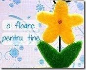 floare_pentru_tinepansy