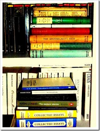 Bookshelves 073