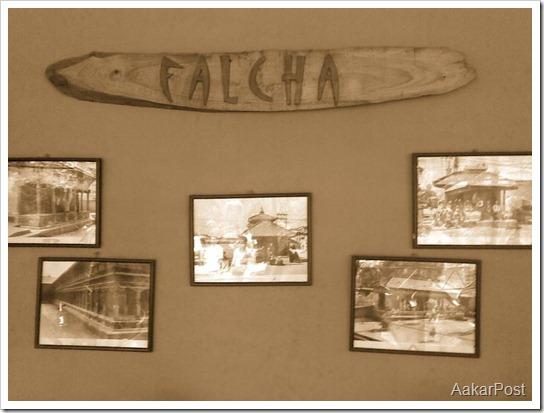 Falcha