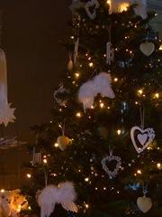 open dag kerst 026