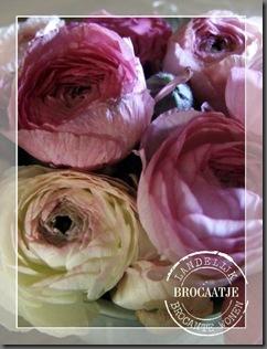 bloemen 041