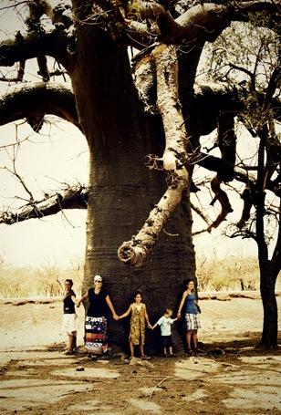 tree3_resize