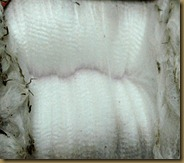 Fleece from one of the new girls