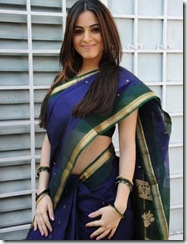 Shradha Arya – Telugu actress looking gorgeous in Saree… (4)