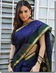 Shradha Arya – Telugu actress looking gorgeous in Saree… (9)