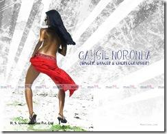 Gaysil Noronha (4)