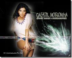 Gaysil Noronha (9)
