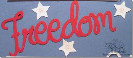 freedom title closeup