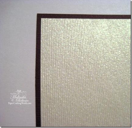 nero paper close up2 500