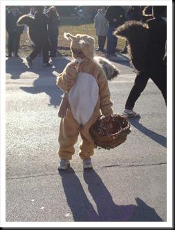 pust v Dornavi 2011 veverice (4)