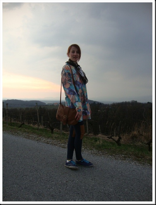 Vintage dress and scarf; H&M bag and leggings; Graceland shoes  (10)