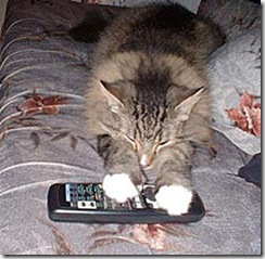 cat-remote-hog (Small)