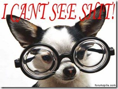 Dog_with_glasses-cant-see