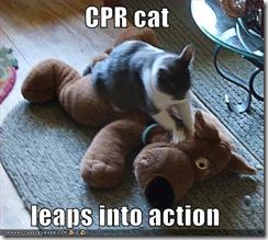 cat-CPR.