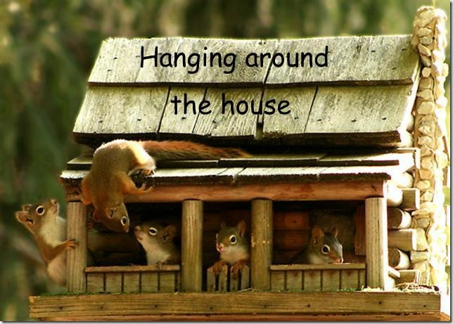 hanging-around-the-house (Small)-1