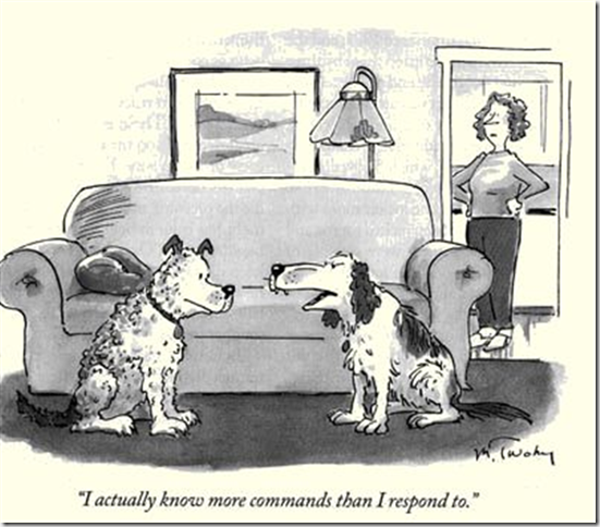 dog-knows-more-commands (Small)