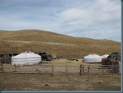 Mongolia (210)