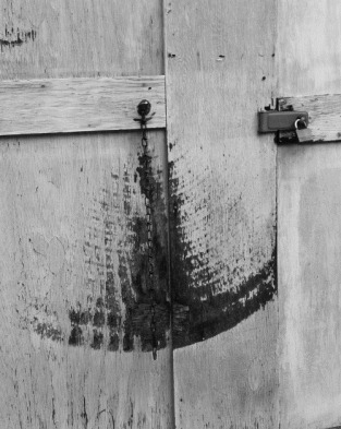 Wooden Door, Washington, DC