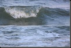 Myrtle Beach 2010 319