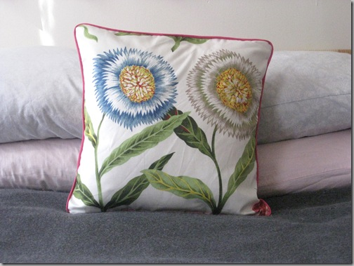 Pillows 2-27 018