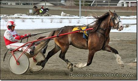 2010-29mars-pondus_01