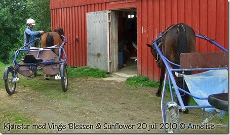 2010-20juli-tur_01