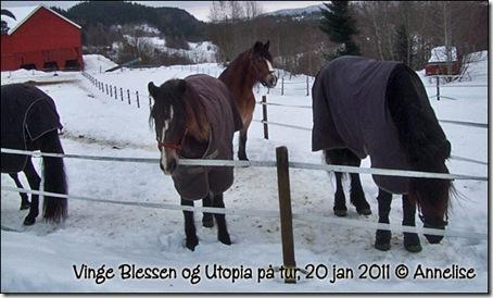 2011-20jan_05