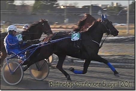 2011-rutinelop-5april_02