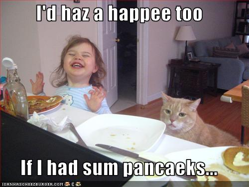 funny-pictures-cat-wants-pancakes.jpg.jpeg