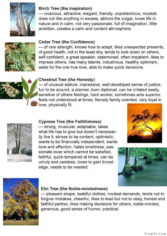Find ur Personality in Trees