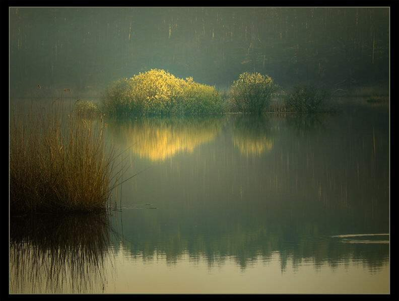 Nature Shots - Lovely Soothing Pics