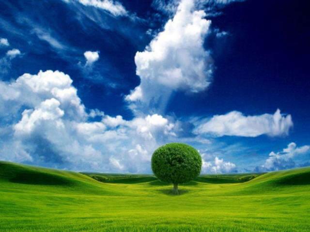 ~*~ Beautifull Nature Pictures ~*~