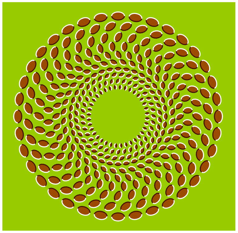 Optical Illusion: expansion and contraction