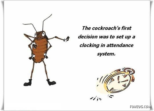 Corporate Lessons from a Hard-working Ant