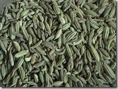 fennel seeds saunf Hindi  indian spice